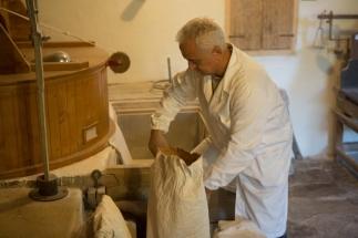 il mugnaio riempie i sacchi con la farina appena macinata