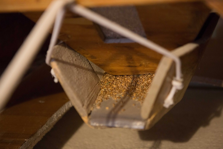 il grano che scende dal cucchiaio e cade nelle macine